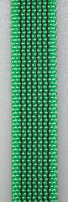 Gummierte Kurzführerleine 50cm genietet & genäht mit Schlaufe genäht 15mm  grün