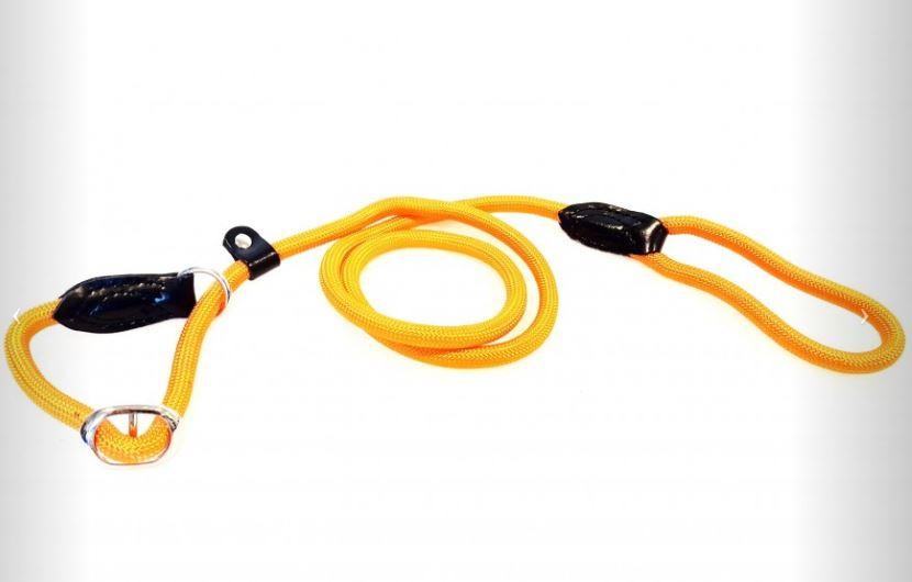 Moxon-/Retrieverleine mit Zugstop Orange