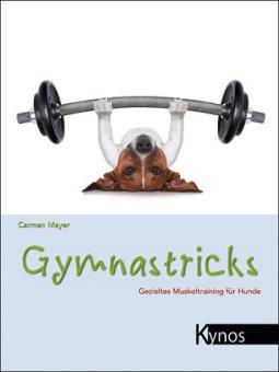 KYNOS - Gymnastricks