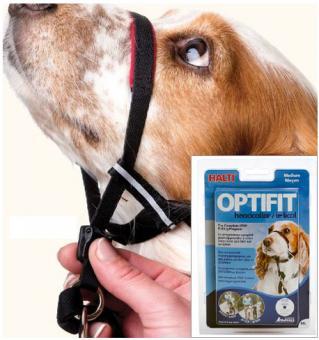 THE COMPANY OF ANIMALS Original HALTI OPTIFIT M
