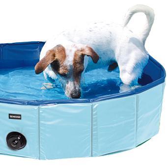 Swimmingpool für Hunde in drei Größen