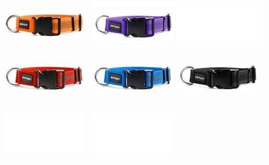 Mystique® Gummiertes Halsband 30mm