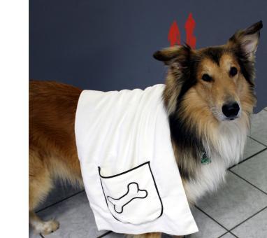 Mikrofaser-Hunde-Handtuch mit praktischen Eingrifftaschen auch mit individuellem Stick