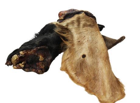 Rinderohren mit Muschel und Fell (10 Stück)