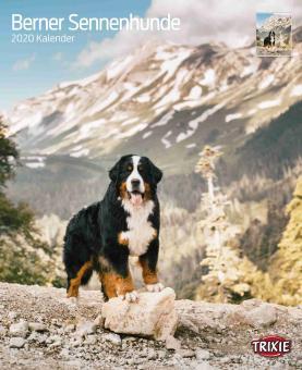 TRIXIE Kalender Berner Sennenhunde