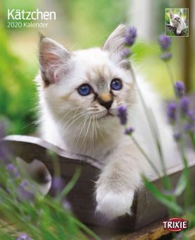 TRIXIE Kalender Kätzchen