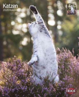 TRIXIE Kalender Katzen
