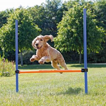 TRIXIE Dog Activity Agility Hürde, Kunststoff, 123 × 115 cm, ø 3 cm, blau/orange