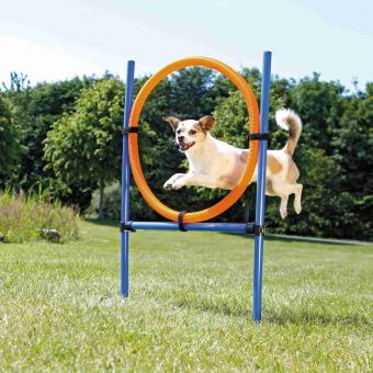 TRIXIE Dog Activity Agility Ring, Kunststoff, 115 × ø 3 cm, ø 65 cm, blau/orange